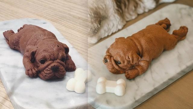 Jadi Viral di Taiwan, Kue Cokelat Mirip Anjing Kini Hadir di Jakarta (14020)