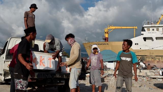 Aktivitas bongkar muat barang, ekonomi Palu dan Donggala melalui Pelabuhan Wani, Donggala