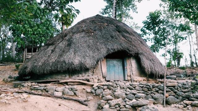 Rumah bulat masyarakat adat Mollo