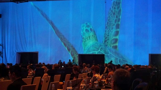 Our Ocean Conference, Bali