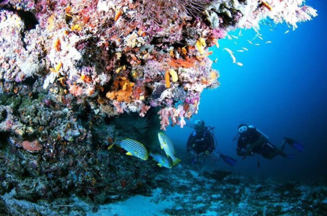 Takabonerate dan Maladewa, Mana yang Lebih Menarik? (6421)