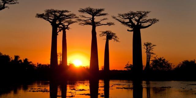 5 Destinasi Wisata yang Layak Dikunjungi di Madagaskar  (704531)