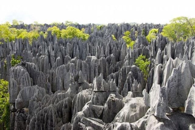 5 Destinasi Wisata yang Layak Dikunjungi di Madagaskar  (704532)