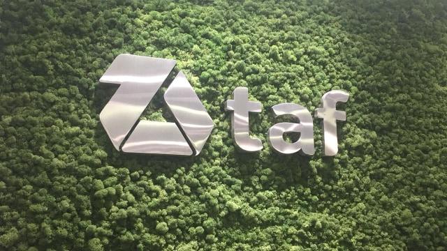 TAF Rambah Bisnis Sewa Mobil, Tarifnya Mulai dari Rp 4 Jutaan per Bulan (1301341)