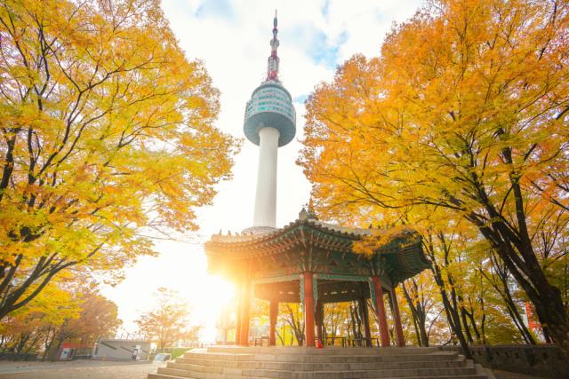 Image result for namsan tower musim gugur