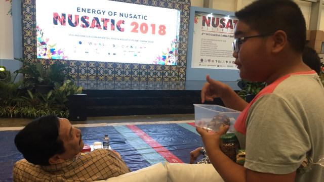 Cucu Luhut Binsar Panjaitan, beli kura-kura di Nusatic 2018