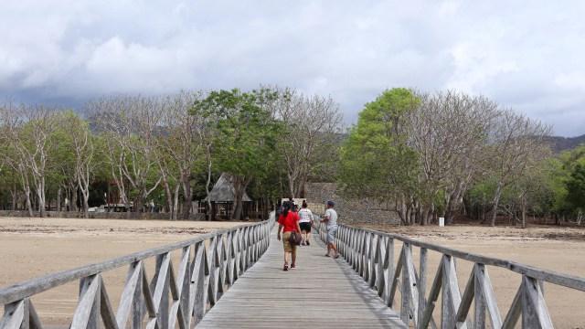 Wisata ala Jurassic Park di TN Komodo, Dirjen KSDAE: Saya Tidak Tahu dari Mana (117026)
