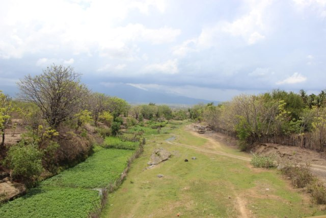 Kecamatan Bayan: Antara Kekeringan Ekstrem dan Kebangkitan Pascagempa (699841)