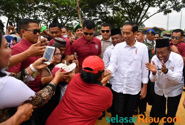 IPW: Jokowi Harus Minta Maaf atas Pembantaian Terkeji di Indonesia  (1481855)