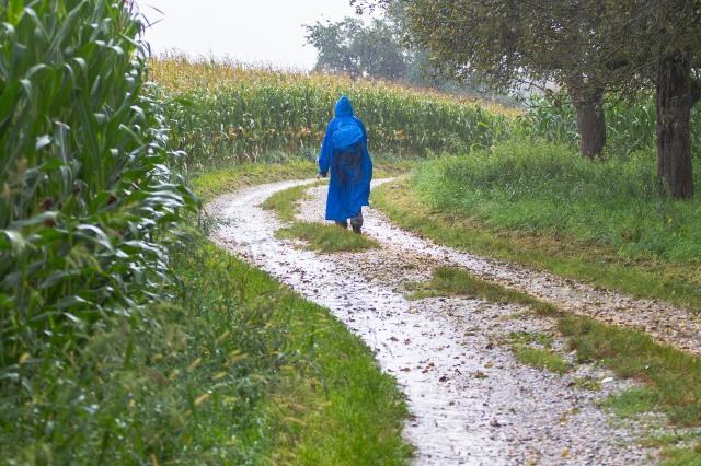 Tips Mendaki Gunung saat Musim Hujan (1174300)