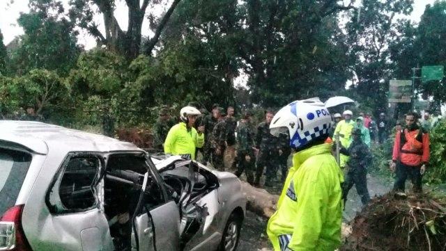Puting Beliung di Kota Bogor, 4 Kendaraan Rusak Tertimpa Pohon (66427)