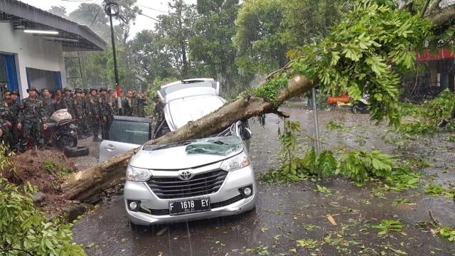 Sosok Enny yang Tertimpa Pohon di Bogor: Ustazah yang Baik Hati (158322)