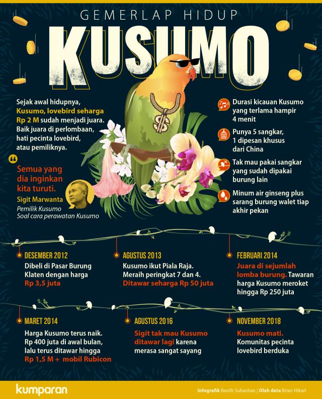 LIPSUS KUSUMO LOVEBIRD