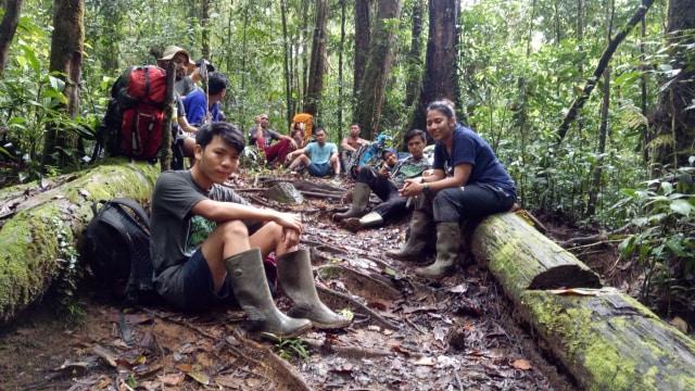 Mereka yang Rela Tinggal di Hutan demi Orang Utan (495251)