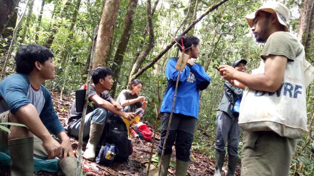 Mereka yang Rela Tinggal di Hutan demi Orang Utan (495253)