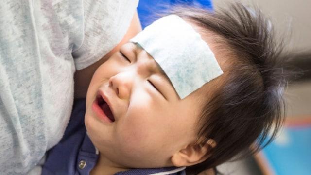 Yang Bisa Orang Tua Lakukan Bila Nafsu Makan Bayi yang Positif COVID-19 Menurun (99061)