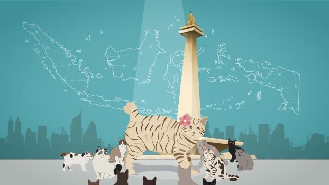 Menerka Jumlah Kucing di Jakarta hingga Tahun 2021 (208037)