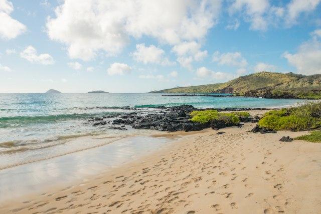 Tak Hanya Putih, 4 Pantai Ini Sajikan Pasir Berwarna Hijau nan Unik (66530)