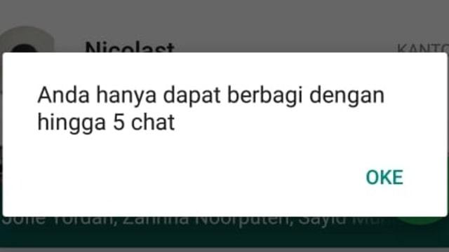 Notifikasi batasan 5 kali forward pesan di WhatsApp