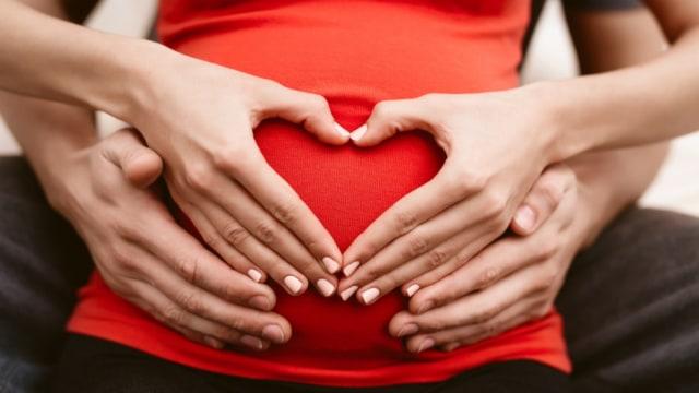 ilustrasi kehamilan di tahun babi tanah