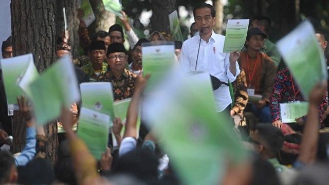 Jokowi, Pengelolaan Hutan Sosial, Wana Wisata Pokland Haurwangi, Cianjur