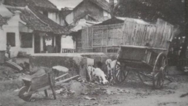 Ketika Pandemi Dikesampingkan: Kisah dari Hindia Belanda (258731)