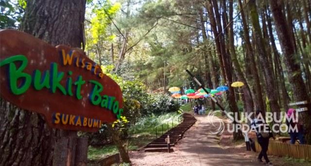 Selfie Instagenik Di Hutan Pinus Bukit Baros Sukabumi