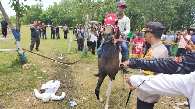 Rekontrusksi, Pacuan Kuda, Lumajang