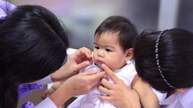 Cara Merawat Kebersihan Gigi dan Mulut Bayi Usia 12-18 Bulan (57075)