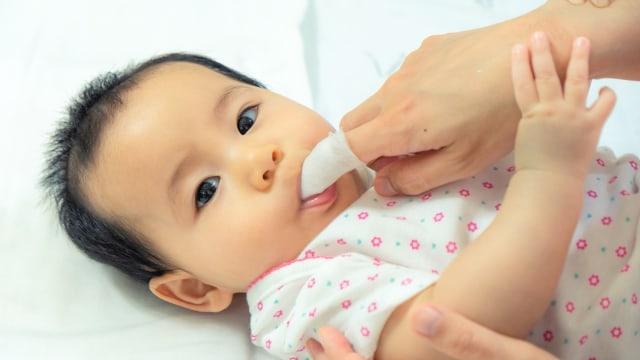Ilustrasi Bayi ke Dokter Gigi