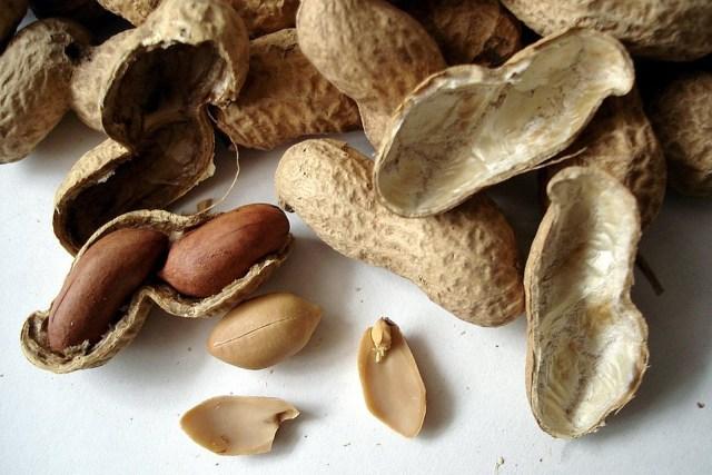 peanuts-1113_960_720.jpg