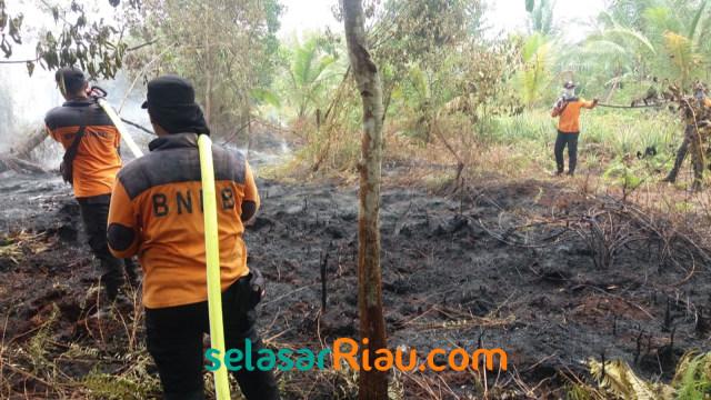 Gubernur Riau Tetapkan Status Siaga Kebakaran Hutan dan Lahan (260366)