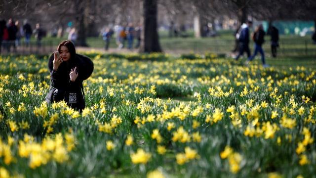Foto: Menikmati Keindahan Musim Semi di London (978743)