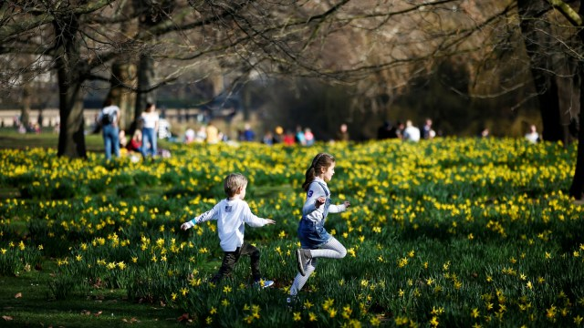 Foto: Menikmati Keindahan Musim Semi di London (978750)