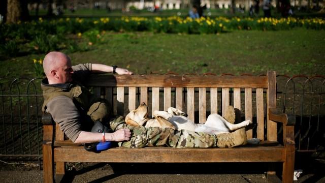 Foto: Menikmati Keindahan Musim Semi di London (978747)