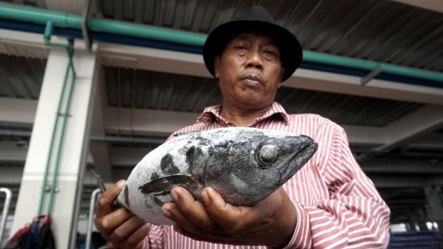 Pasar Ikan Modern (PIM) Muara Baru di Penjaringan, Jakarta Utara