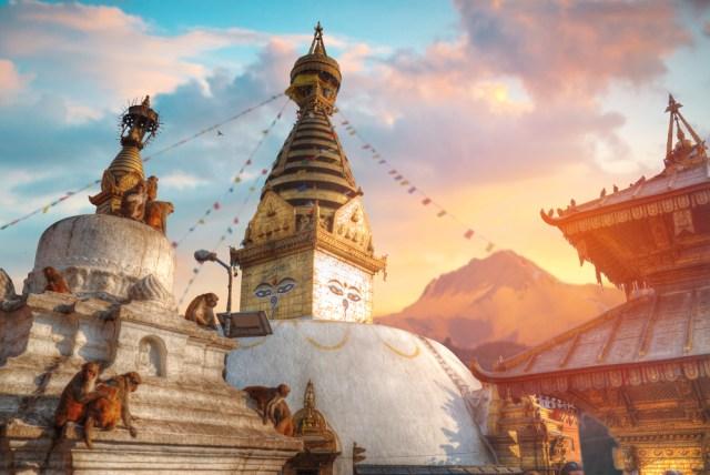 Nepal Bakal Gelar Festival Kurban Hewan Massal Terbesar di Dunia (880111)