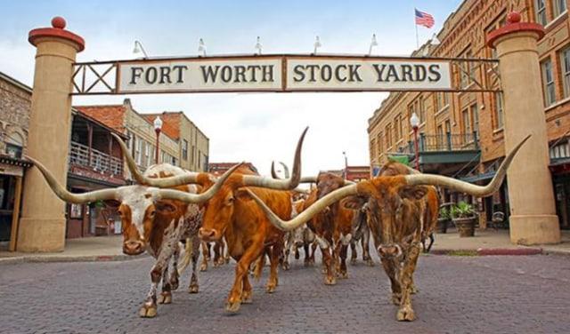 5 Tempat yang Wajib Dikunjungi di Texas (27692)