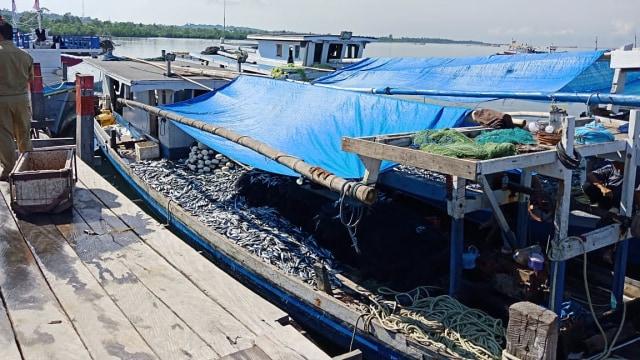 KKP Siapkan Aturan Baru untuk Jaga Produksi Tuna Cakalang Tongkol (267059)