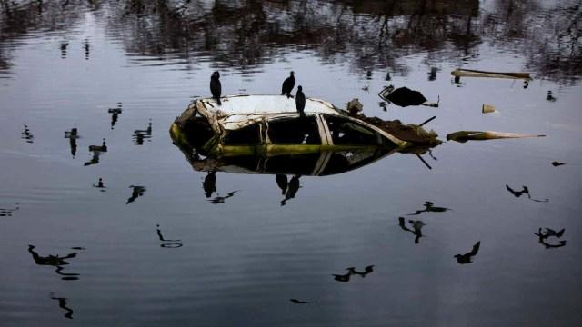 BMKG Ungkap Wilayah Potensi Kena Tsunami, Yuk Siapkan Asuransi Mobil Sekarang (29301)