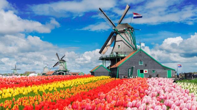 Bukan Lagi Holland, Kini Belanda Resmi Disebut Netherland ...