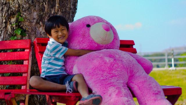 Alasan Anak-anak Suka Main Boneka Binatang (73939)