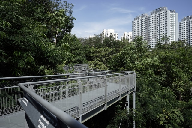 com-Ada banyak taman kota Singapura yang luas dan mudah dijangkau dari pusat kota.