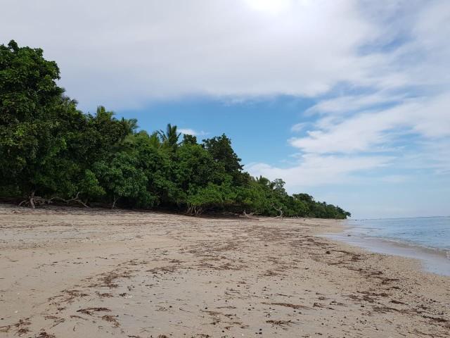 Pantai Doreng dan Ogor Paret, Surga Tersembunyi di Selatan Sikka (93784)