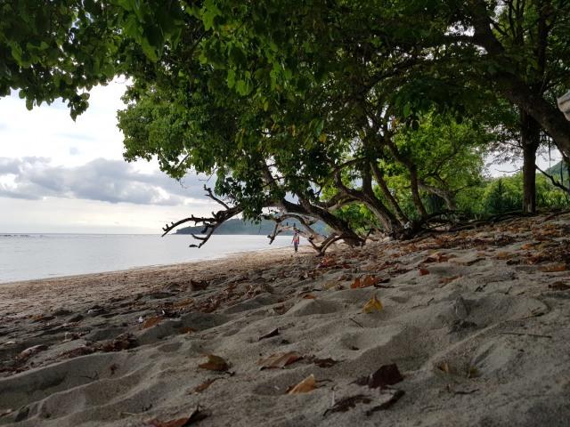 Pantai Doreng dan Ogor Paret, Surga Tersembunyi di Selatan Sikka (93785)