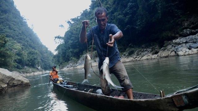 Berburu Ikan Kesukaan Sultan di Krueng Teunom, Aceh (103017)