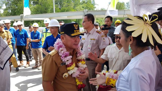 Gubernur Kalteng Minta Pemerintah Pusat Batalkan Impor Sapi (1029435)