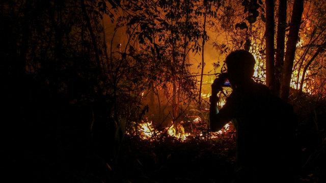 Walhi: Jokowi Ancam Copot Kapolda Tak Efektif Selesaikan Karhutla (73048)