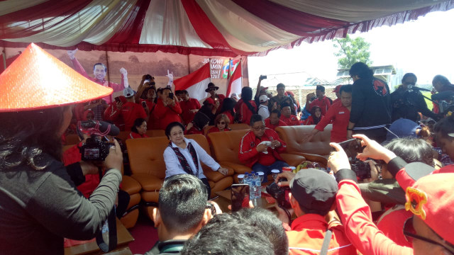 Kampanye PDIP di Indramayu, Megawati Panen Raya Padi Jenis MSP (110572)