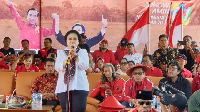 Kampanye PDIP di Indramayu, Megawati Panen Raya Padi Jenis MSP (110573)